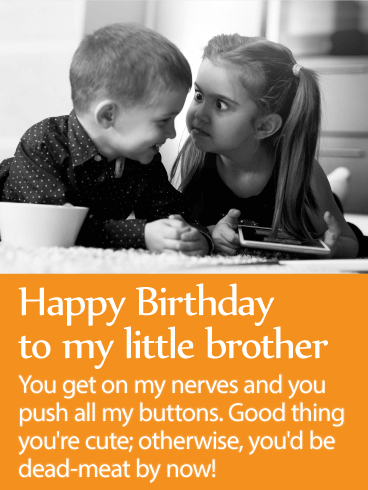to my loveable brother happy birthday wishes card