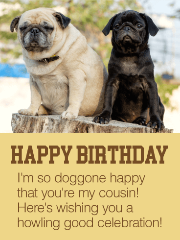 Happy to Have You as my Cousin - Happy Birthday Card