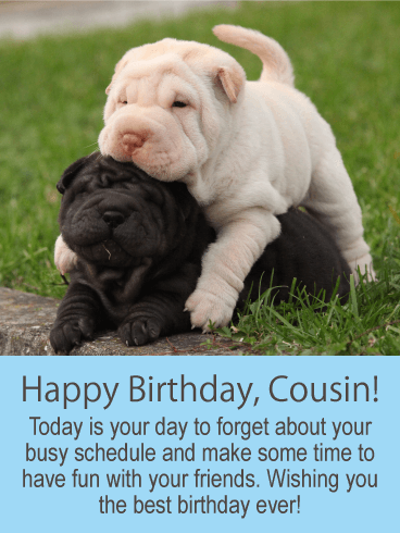 Happy Birthday, Cousin! Today Is Your Day To Forget About Your Busy  Schedule And