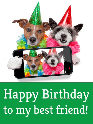 Two Best Dog Friends Card | Birthday & Greeting Cards by Davia