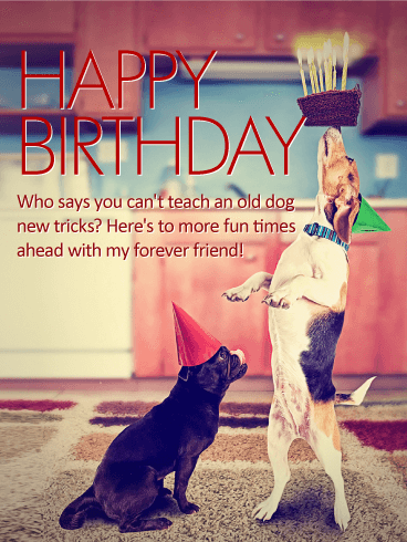 To my Forever Friend - Happy Birthday Card