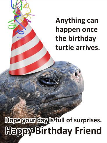 Fun Turtle Funny Birthday Card For Friends Birthday Greeting