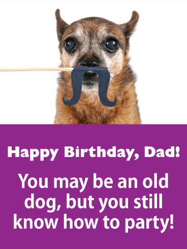 happy birthday dad you may be an old dog but you still know