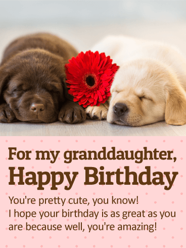 To my Cute Granddaughter - Happy Birthday Wishes Card