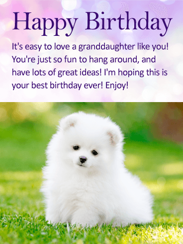 To my Fun Granddaughter - Happy Birthday Wishes Card