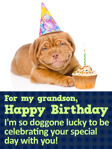 Smiling Dog Happy Birthday Wishes Card for Grandson