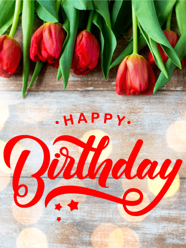 Tulip Happy B-Day Card