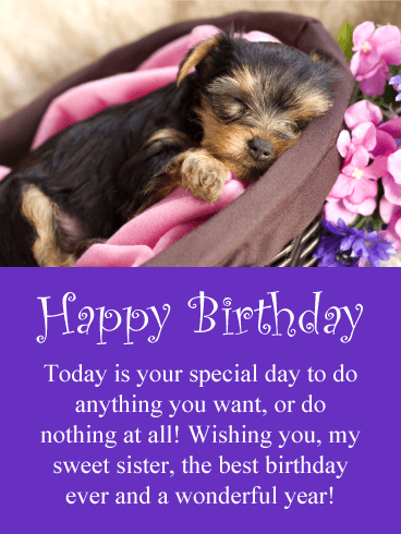 Sweet Puppy Happy Birthday Card for Sister
