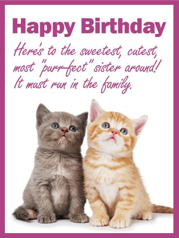 Astounding To My Purrfect Sister Happy Birthday Card Birthday Greeting Personalised Birthday Cards Epsylily Jamesorg