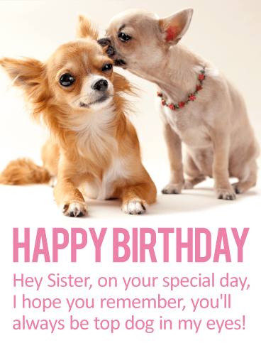 Youll Always Be Top Dog Happy Birthday Card For Sister