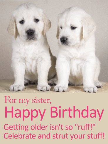 Celebrate Your Day! Happy Birthday Card for Sister