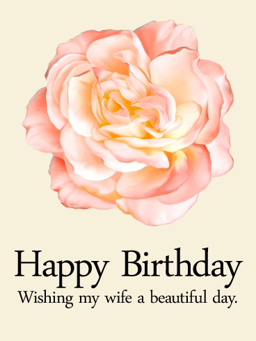 Pink Rose Happy Birthday Card for Wife