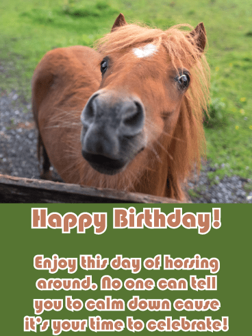 Horsing Around – Funny Birthday Animal Card