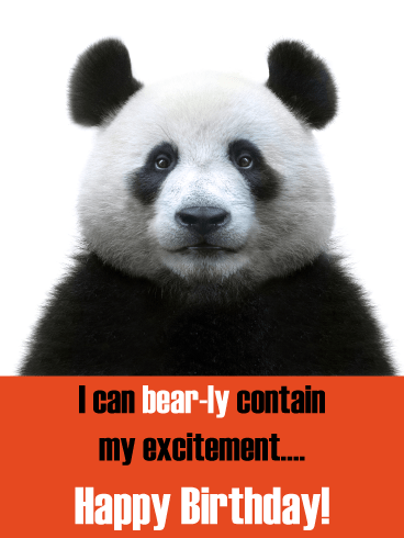 Panda Bear-ly – Funny Animal Birthday Card
