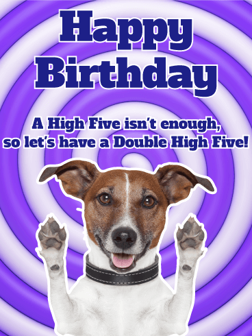Let's Have a Double High Five! Funny Birthday Card
