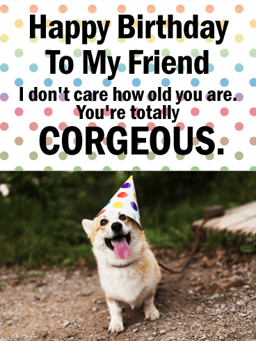 You're Corgeous! Funny Birthday Card for Friends