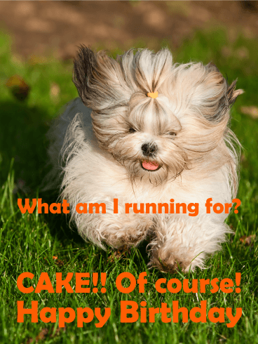 Run for Cake! Funny Birthday Card