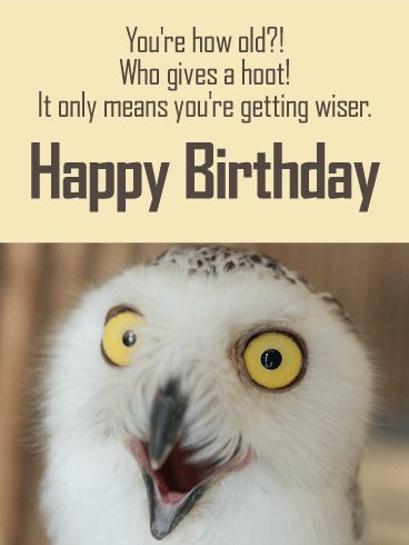 Who Gives a Hoot! Funny Birthday Card