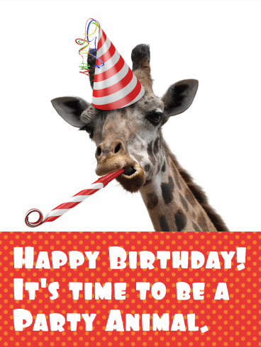 Time to be a Party Animal! Funny Birthday Card