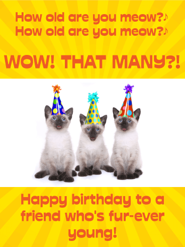 Whos Counting Funny Birthday Card For Friends Birthday
