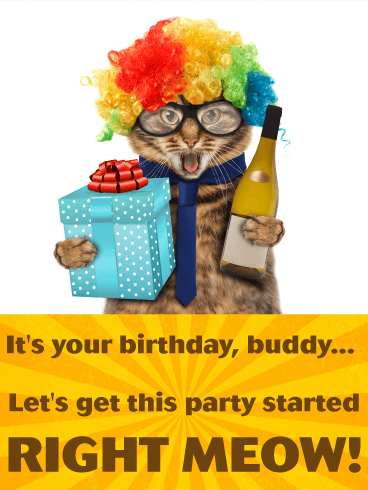 Party Cat Funny Birthday Card for Friends