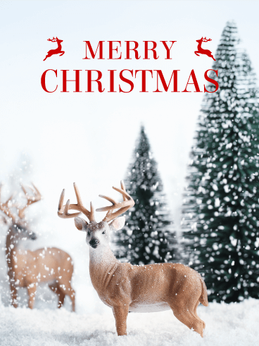 Reindeer Merry Christmas Card