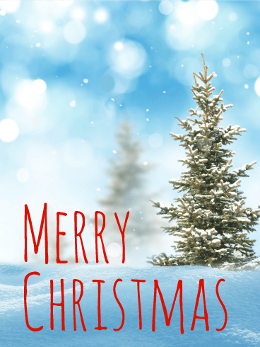 Fir Tree Merry Christmas Card