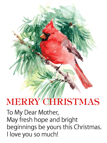 Red Cardinal Merry Christmas Wishes Card for Mother