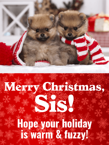 Have Warm & Fuzzy Holiday! Merry Christmas Card for Sister