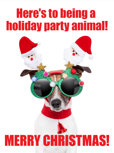 Party Animal Funny Merry Christmas Card