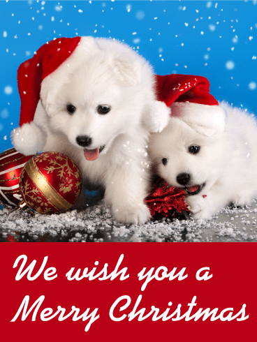 Santa Puppies Merry Christmas Card