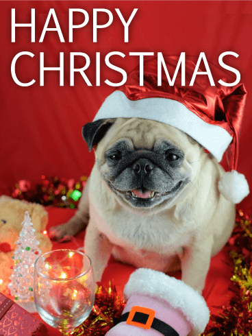 Santa Pug Merry Christmas Card