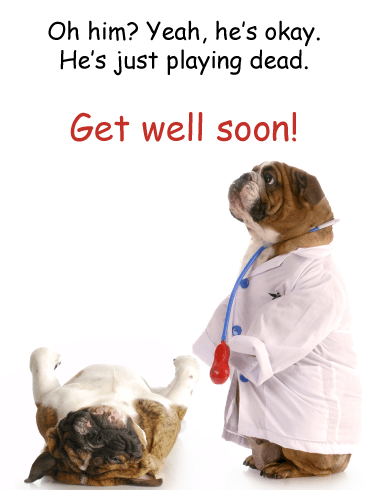 Dog Tricks – Funny Animal Get Well Soon Card