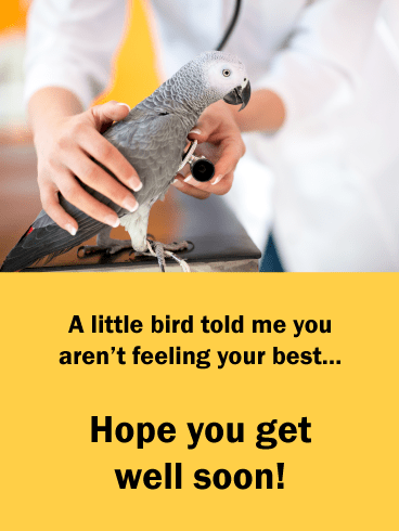 A Little Bird Told Me – Animal Get Well Soon Card