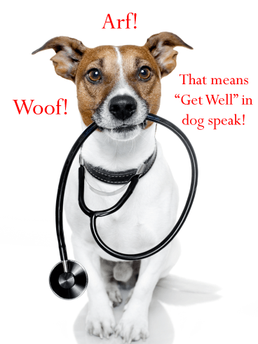 Dog Speak – Funny Animal Get Well Card