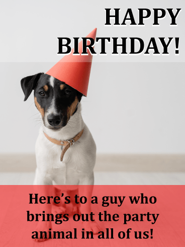 Party animal – Happy Birthday Card for Him