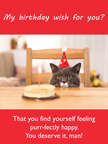 Purr-fectly Happy – Birthday Card for Him