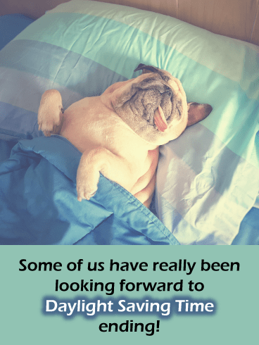 Sleepy Pug – Cute Animal Daylight Saving Ends Card