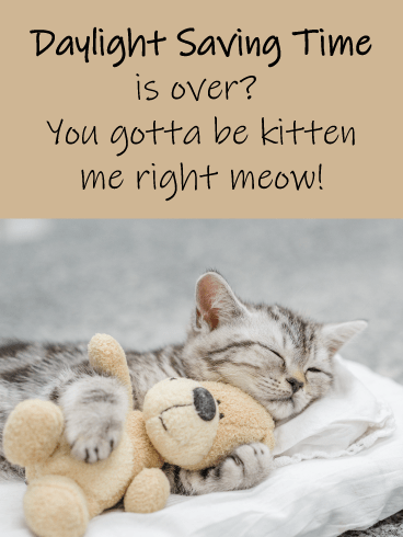 Kitten Meow – Funny Daylight Saving Ends Cat Card