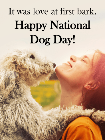 Shaggy Dog with Owner – Happy Dog Day Card