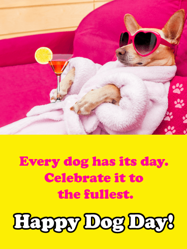 Pampered Chihuahua - Happy Dog Day Card