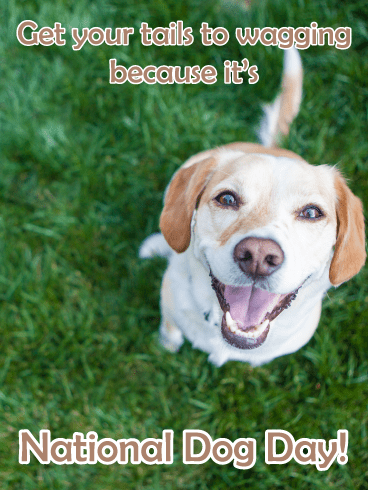 Tail-Wagging Time – Happy National Dog Day Card