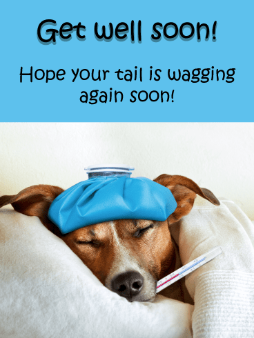 Tail Wagging – Get Well Card