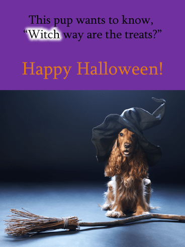 Witch Way to Treats – Funny Happy Halloween Card