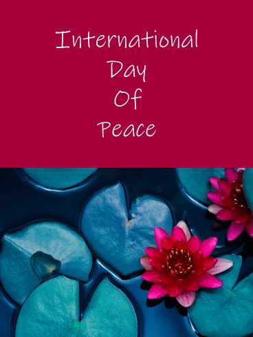 Red Lotus - International Day of Peace Card
