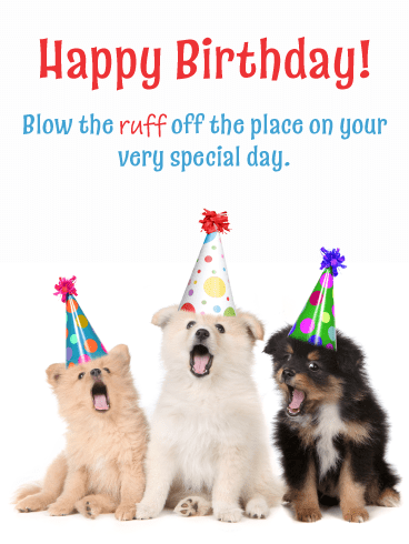 Celebration Puppies – Happy Birthday Card