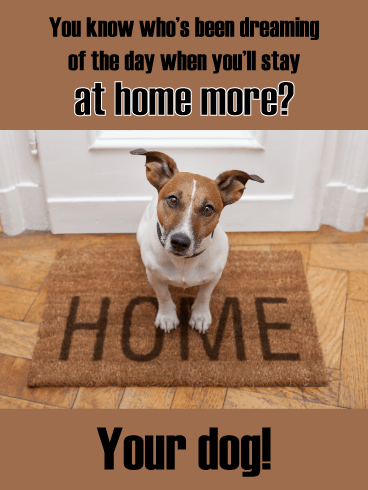 Happy Dog – Stay at Home Card