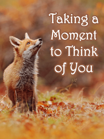 Cute Fox – Thinking of You Card