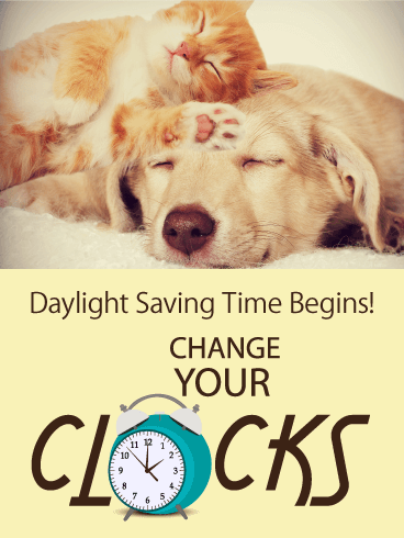 Sleeping Cat & Dog - Daylight Saving Time Card