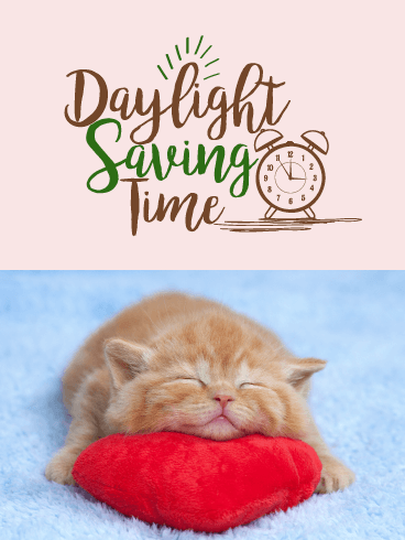 Adorable Kitten - Daylight Saving Time Card